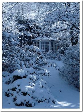 Schnee%2012_02_09%20023-1