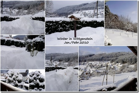 Winter_2010-1