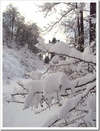 Winter in Dahlbruch