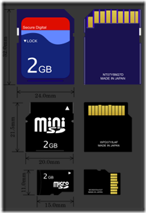 303px-SD_Cards.svg