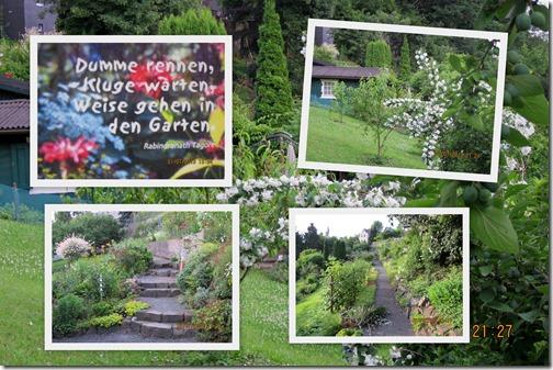 2013-Juli-Garten1
